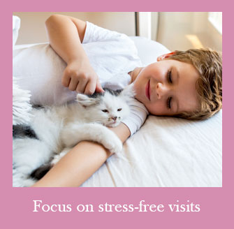We Help Create a Stress Free Environment